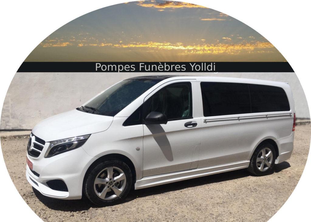 Mercedes Benz Vito Limousine